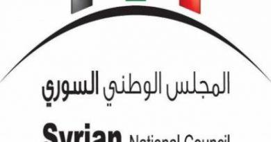 القوى السياسية والمدنية والعسكرية في سوريا 2011-2021  المجلس الوطني السوري